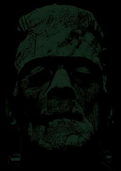 the events that inspired the writing of frankenstein a novel by mary shelley Reasons why did mary shelley write frankenstein was that mary shelley, was no commonplace a teenager she was a literary novice in her own respect, right from childhood.